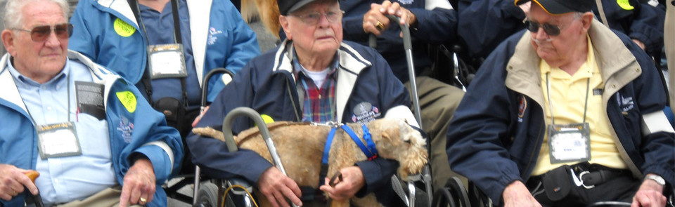 Service Dogs Serve Those Who Have Served